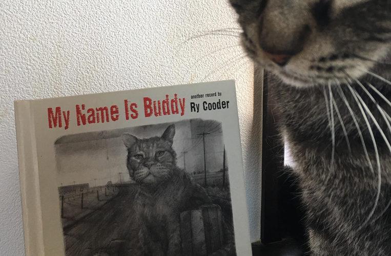 『My Name Is Buddy』 Ry Cooder〜Hoboになったねこ〜/お宝ねこジャケコレクション#01