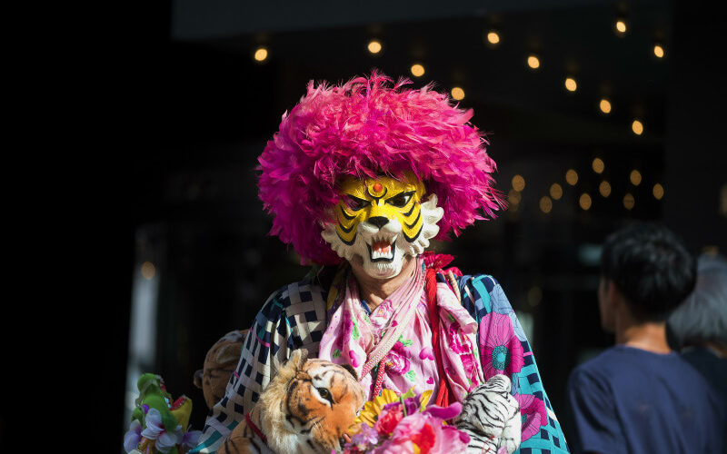 トラだってねこ科!LOVE&PEACEを表現し続ける謎の人『新宿タイガー』/銀幕のねこたち#04