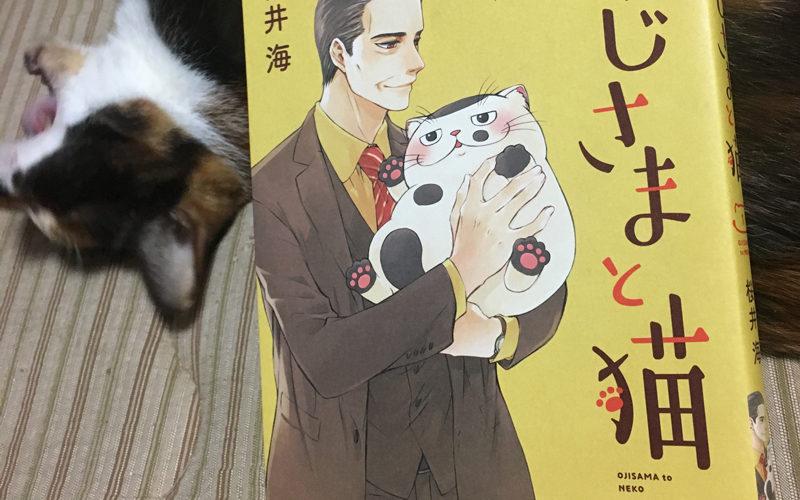 『おじさまと猫 1』桜井海著  〜笑って泣けるブサかわ・ふくまるとの日々〜