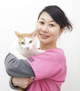 獣医師の青山千佳です。 猫の臨床、往診経験豊富。個性豊かな保護猫7匹と暮らす。猫ちゃん目線で診察します。