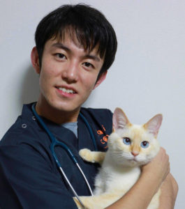 獣医師の浅見優樹です。ねこ専門病院で多数の保護猫の診察を経験。ねこに負担の少ない優しい診療を行います。