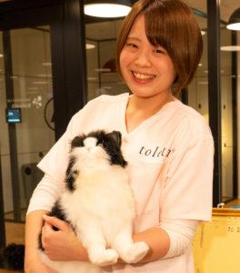 動物看護師の飯塚友李乃です。約2年間ねこ専門病院で看護師として勤務。ねこちゃんにとって少しでも負担の少ない診療のサポートが出来るよう、日々考え努力致します。